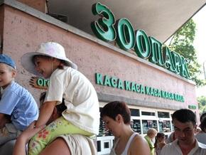 Европейские защитники животных: Киевский зоопарк не получит членство в ЕAZА