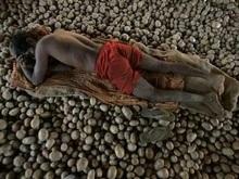Между Чили и Перу разгорелся спор, кто первым начал есть картофель