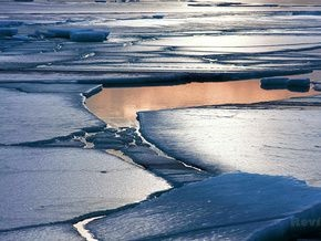 Российские рыбаки попросили снимать их со льдины медленнее, так как начался клев