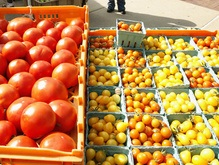 Ученые узнали, почему помидоры имеют разную форму