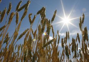 В США впервые запустят фьючерс на причерноморскую пшеницу