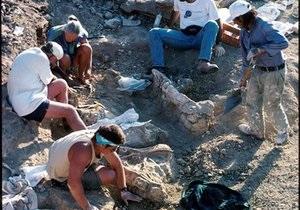 В Чили обнаружили шахту, созданную 12 тысяч лет назад