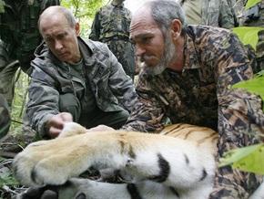 Тигрица Путина родила
