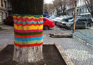 В центре Одессы деревья укутали в  шерстяные шарфы