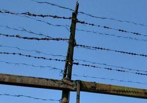 Янукович подписал закон об амнистии: на свободу выйдут более трех тысяч заключенных