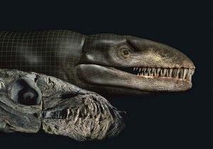 Швейцарец создал часы из продуктов жизнедеятельности динозавров