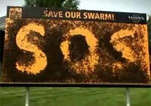 Британские виноделы установили билборд из ста тысяч живых пчел