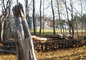 Канадец по ошибке решил пустить произведение искусства на дрова
