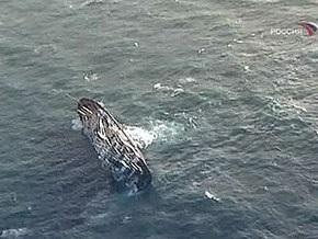 Восемь моряков с тонущего в Японском море судна погибли при спасательной операции
