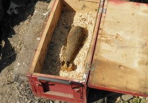 В центре Ужгорода была обнаружена минометная мина времен Второй мировой