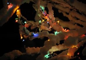 Глава Роспотребнадзора назвал новогодние праздники в России декадой ужаса