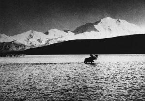30 марта - Ван Гог - Аляска: день в истории