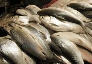 Украина может сократить перечень подлежащих обязательной сертификации продуктов питания