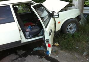 В Донецке кот спровоцировал ДТП