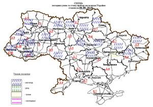 Власти заявляют, что несмотря на снегопады, проезд по дорогам Украины обеспечен