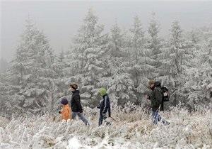 Великобритания намерена продать государственные леса
