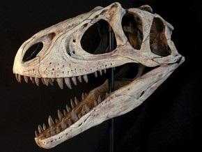Палеонтологи: Треть описанных видов динозавров являются несуществующими