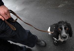Верховная Рада увеличила втрое штраф за жестокое обращение с животными