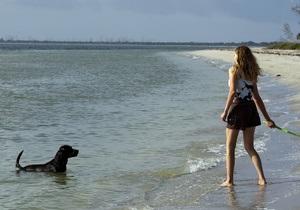 В Испании открыли пляж для собак
