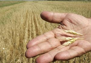 Зерно пытаются экспортировать вопреки договоренностям с Кабмином