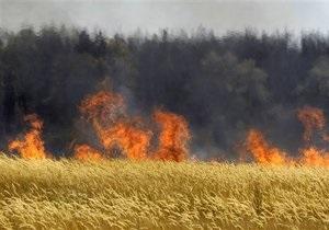В России горят леса. Ситуация на данный момент