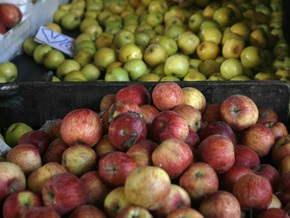 Польский депутат объяснил свое нетрезвое состояние употреблением яблок