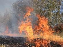 Украину охватили пожары