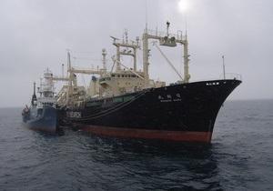 Экологи из Sea Shepherd столкнулись с японскими китобоями