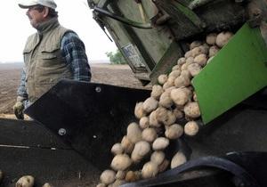 Эксперты отмечают резкий рост рентабельности картофелеводства в Украине