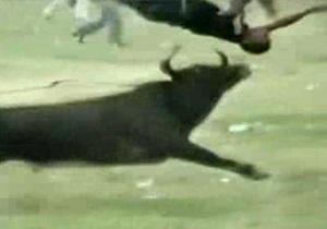 В Колумбии во время забега с быками пострадали десятки человек, есть погибшие
