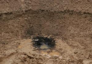 Бельгийка хочет продать метеорит, упавший возле ее дома
