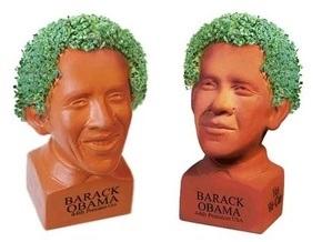 Во Флориде запретили продавать травянистые головы Обамы