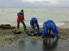 Украина намерена требовать от России $1,5 млрд за загрязнение Керченского пролива