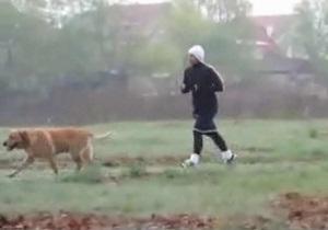 Тимошенко: Я в 6:45 выбегаю, бегаю со своей любимой собакой, ну и потом иду на войну