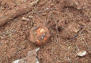 На месте падения польского самолета под Смоленском нашли черный ящик