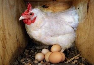 Китай вдвое увеличил пошлину на американскую курятину