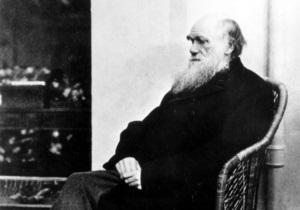На выборах в Конгресс США четыре тысячи жителей Джорджии проголосовали за Дарвина