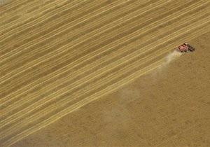 Минагрополитики Украины снизило прогноз урожая зерна