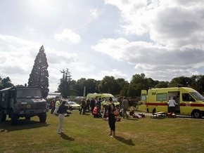 В Бельгии на торжествах в Королевском дворце лошадь травмировала четверых людей
