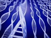 Сенат США запретил в стране генную дискриминацию