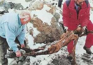 Ученые нашли родственников ледяного человека Отци на Сардинии