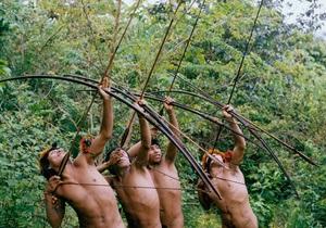 В Латвии намерены разрешить охоту с луком и стрелами