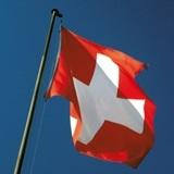 Опрос: Фаворитом на выборах в Швейцарии является партия, выступающая против иммигрантов