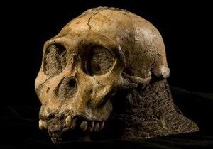 В Южной Африке нашли останки человекоподобных существ