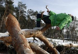 Киевзеленстрой передал в прокуратуру материалы относительно вырубки деревьев в парке Покал