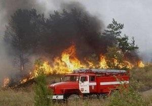 Число жертв лесных пожаров в России возросло до 40 человек