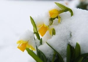 Синоптики: В середине апреля в Украину придет сильное похолодание