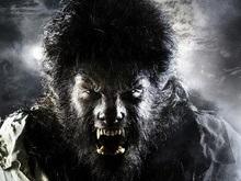 Опубликованы первые фото Бенисио дель Торо в образе Человека-волка
