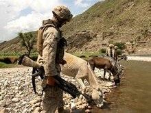 За июнь в Афганистане погибло рекордное число солдат НАТО