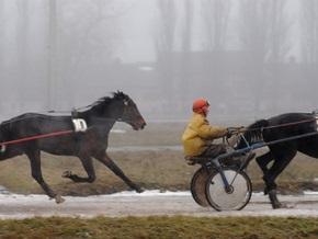 На Киевском ипподроме главные скачки сезона пройдут без ставок